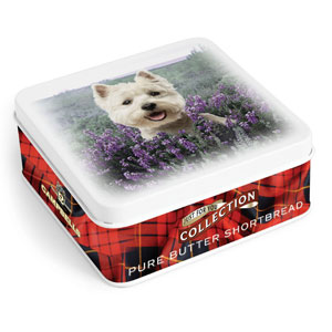 Westie in Heather Square Shortbread Tin from Campbell's.
